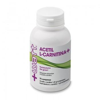Acetil L Carnitina+