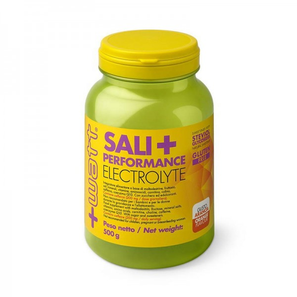 Sali+ Performance Electrolyte 500 Grammi gusto Arancia
