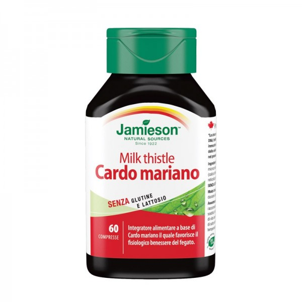 Cardo Mariano – Milk Thistle