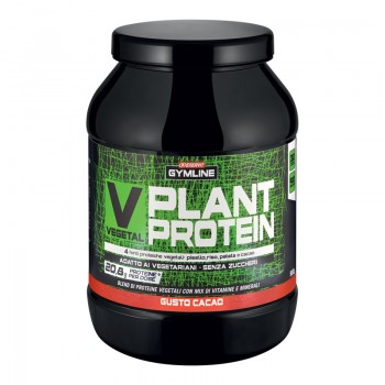 Vegetal Plant Protein